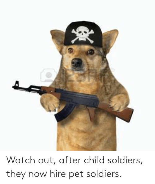 Soldiers, Watch Out, and Watch: Watch out, after child soldiers, they now hire pet soldiers.