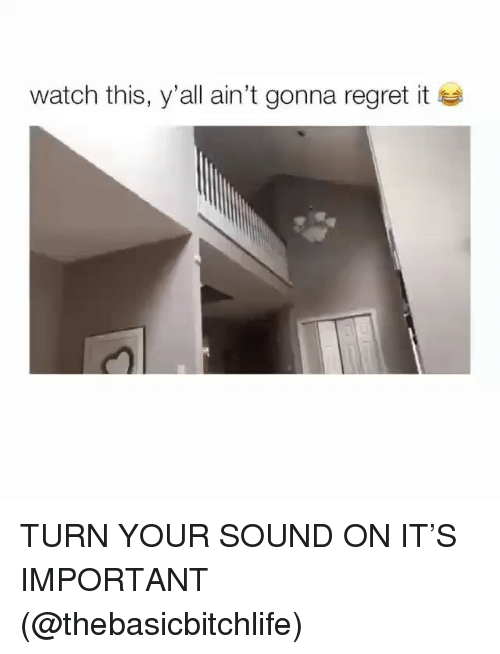 Memes, Regret, and Watch: Watch this, y'all ain't gonna regret it TURN YOUR SOUND ON IT'S IMPORTANT (@thebasicbitchlife)