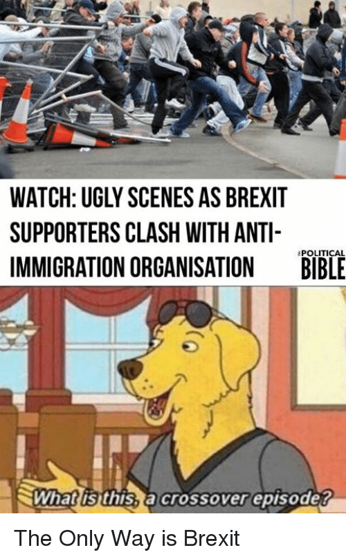 Watch Ugly Scenes As Brexiit Supporters Clash With Anti Immigration