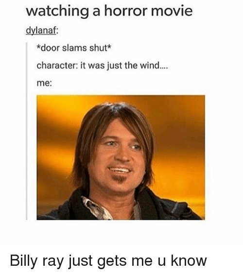 Girl, Horror, and Doors: watching a horror movie  dylanaf:  *door slams shut  character: it was just the wind....  me: Billy ray just gets me u know