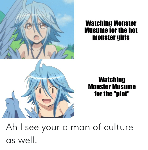 "Anime, Girls, and Monster: Watching Monster  Musume for the hot  monster girls  Watching  Monster Musume  for the ""plot"" Ah I see your a man of culture as well."