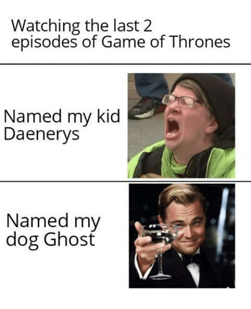 Game of Thrones, Game, and Ghost: Watching the last 2  episodes of Game of Thrones  Named my kid  Daenerys  Named my  dog Ghosť