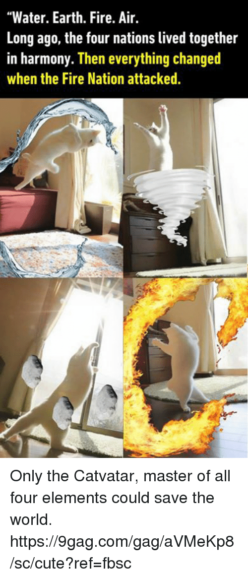 """9gag, Cute, and Dank: """"Water. Earth. Fire. Air.  Long ago, the four nations lived together  in harmony. Then everything changed  when the Fire Nation attacked Only the Catvatar, master of all four elements could save the world. https://9gag.com/gag/aVMeKp8/sc/cute?ref=fbsc"""