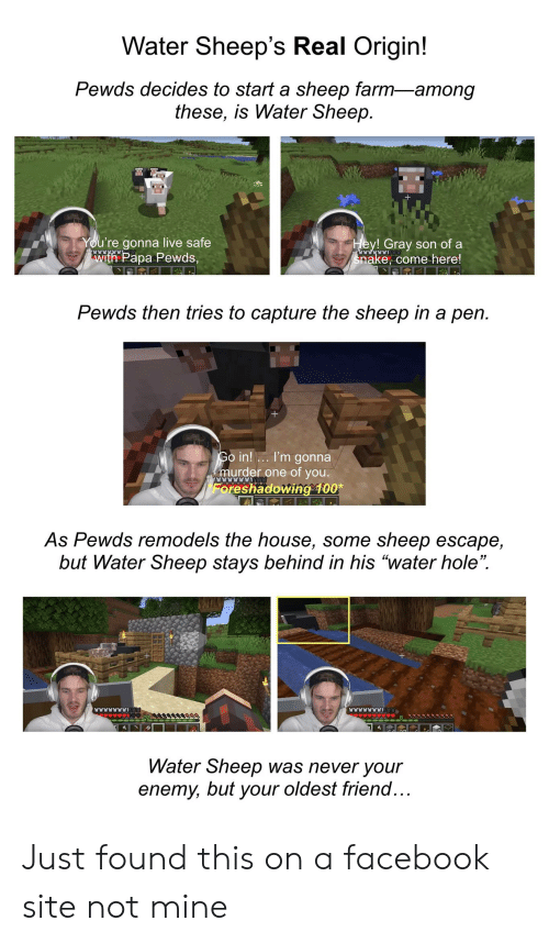 Water Sheep's Real Origin! Pewds Decides to Start a Sheep