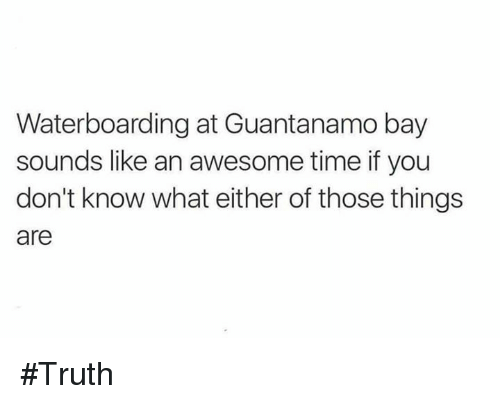 Memes, Time, and Awesome: Waterboarding at Guantanamo bay  sounds like an awesome time if you  don't know what either of those things  are #Truth