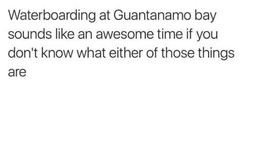 Time, Awesome, and Guantanamo Bay: Waterboarding at Guantanamo bay  sounds like an awesome time if you  don't know what either of those things  are