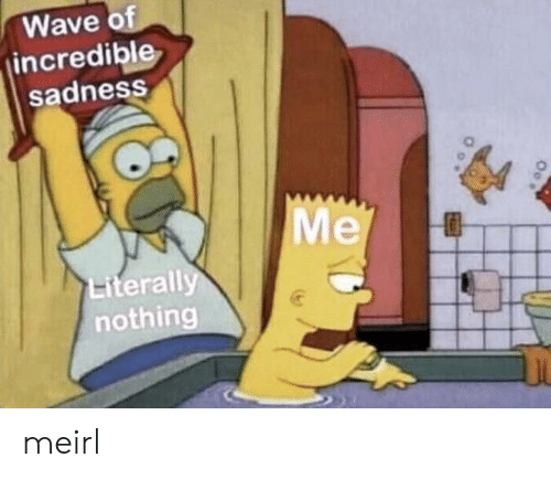 MeIRL, Wave, and Sadness: Wave o  incredible  sadness  Me  Literall  nothing meirl