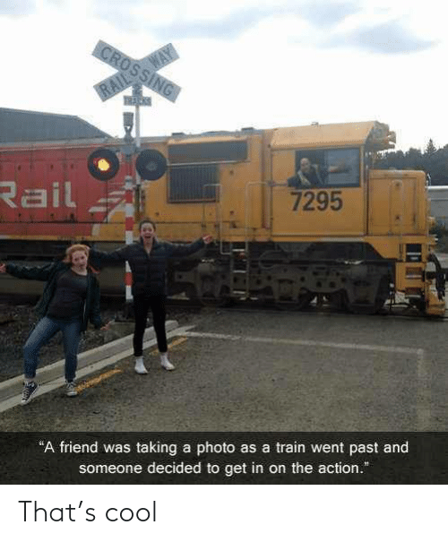 """Cool, Train, and Friend: WAY  CROSSING  RAIL  Rail  7295  """"A friend was taking a photo as a train went past and  someone decided to get in on the action."""" That's cool"""