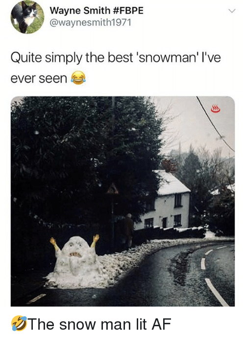 Af, Lit, and Memes: Wayne Smith #FBPE  @waynesmith1971  Quite simply the best 'snowman' l've  ever seen 🤣The snow man lit AF