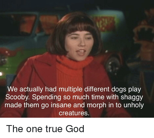 Dogs, God, and True: We actually had multiple different dogs play  Scooby. Spending so much time with shaggy  made them go insane and morph in to unholy  creatures. The one true God