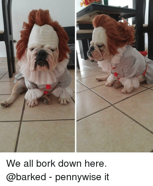Memes, 🤖, and Pennywise: We all bork down here. @barked - pennywise it