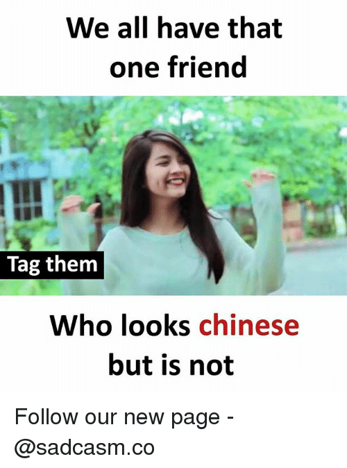Memes, Chinese, and 🤖: We all have that  one friend  Tag them  Who looks chinese  but is not Follow our new page - @sadcasm.co