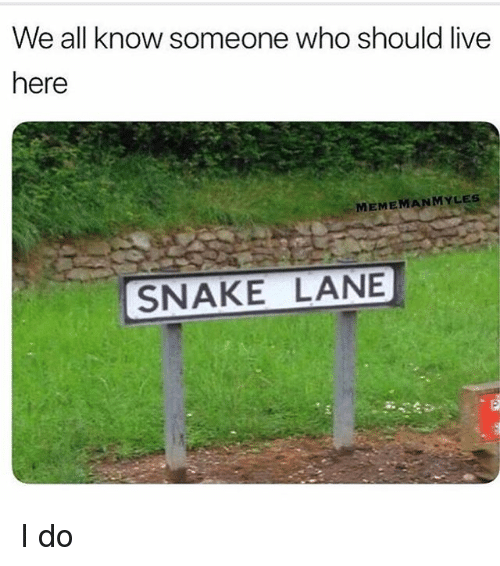 Memes, Live, and Snake: We all know someone who should live  here  MEMEMANMYLES  SNAKE LANE I do