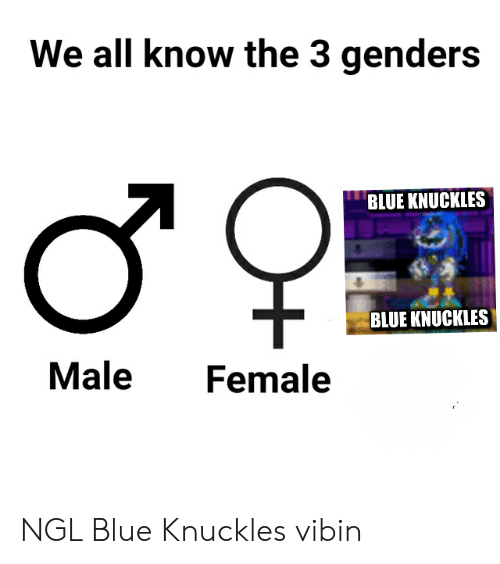 Blue, Dank Memes, and All: We all know the 3 genders  ш  BLUE KNUCKLES  BLUE KNUCKLES  Male  Female  о- NGL Blue Knuckles vibin