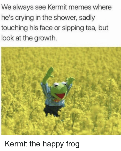 Crying, Memes, and Shower: We always see Kermit memes where  he's crying in the shower, sadly  touching his face or sipping tea, but  look at the growth. Kermit the happy frog