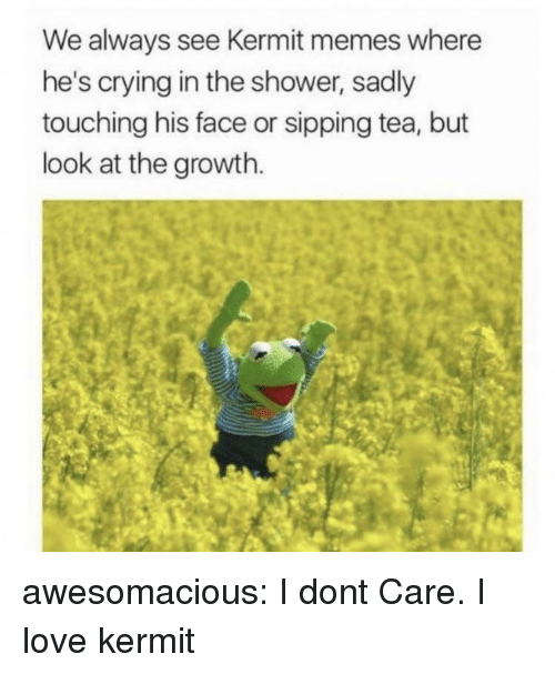 Crying, Love, and Memes: We always see Kermit memes where  he's crying in the shower, sadly  touching his face or sipping tea, but  look at the growth. awesomacious:  I dont Care. I love kermit