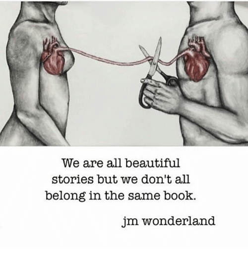 Beautiful, Memes, and Book: We are all beautiful  stories but we don't all  belong in the same book.  jm wonderland