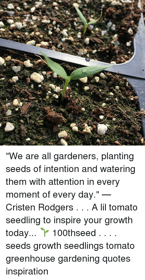 We Are All Gardeners Planting Seeds Of Intention And Watering Them