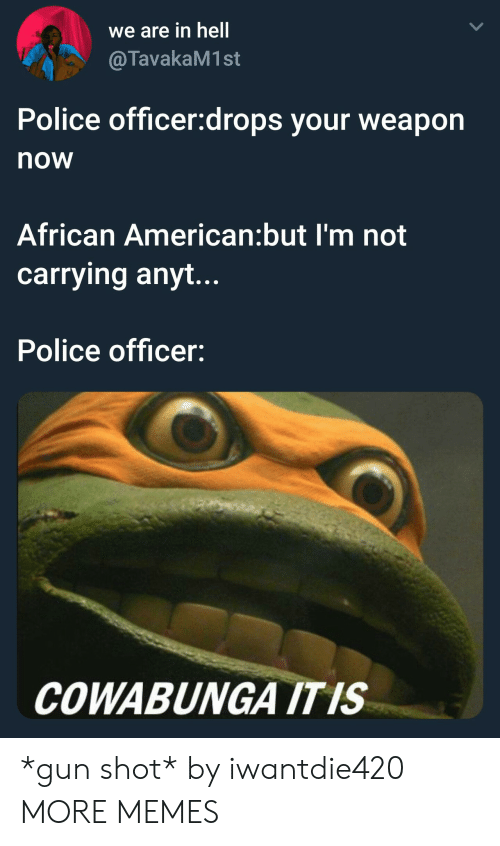 Dank, Memes, and Police: we are in hell  @TavakaM1st  Police officer:drops your weapon  now  African American:but I'm not  carrying anyt...  Police officer:  COWABUNGA ITIS *gun shot* by iwantdie420 MORE MEMES