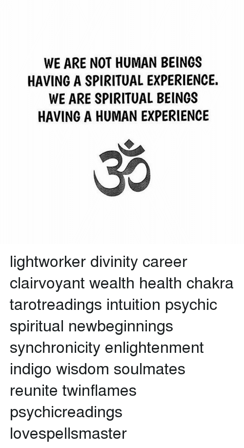 WE ARE NOT HUMAN BEINGS HAVING a SPIRITUAL EXPERIENCE WE ARE