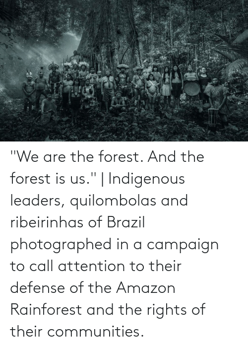 """Amazon, Brazil, and The Forest: """"We are the forest. And the forest is us."""" 