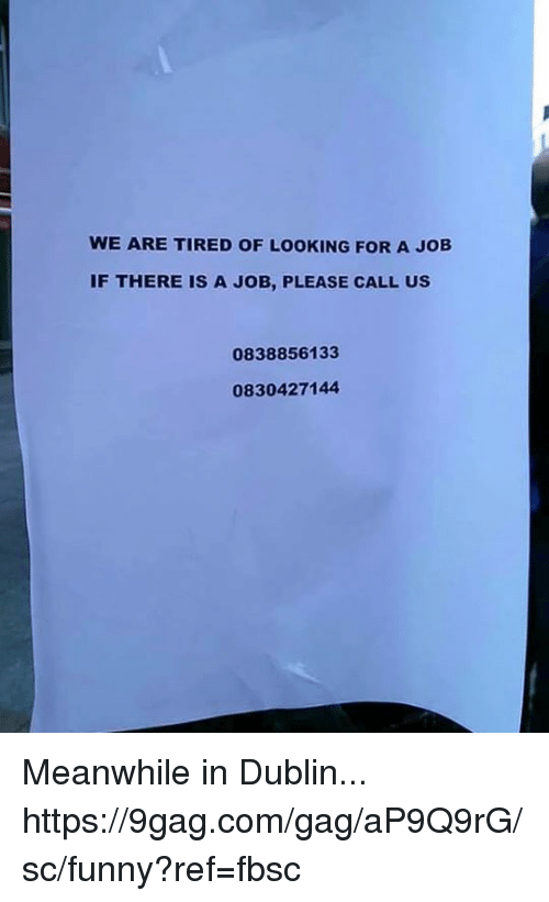 9gag, Dank, and Funny: WE ARE TIRED OF LOOKING FOR A JOB  IF THERE IS A JOB, PLEASE CALL US  0838856133  0830427144 Meanwhile in Dublin... https://9gag.com/gag/aP9Q9rG/sc/funny?ref=fbsc