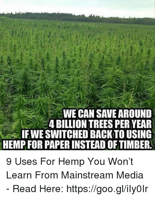 Memes, 🤖, and Hemp: WE CAN SAVE AROUND  4 BILLION TREES PER YEAR  IF WE SWITCHED BACK TO USING  HEMP FOR PAPERINSTEAD OF TIMBER 9 Uses For Hemp You Won't Learn From Mainstream Media - Read Here: https://goo.gl/iIy0Ir