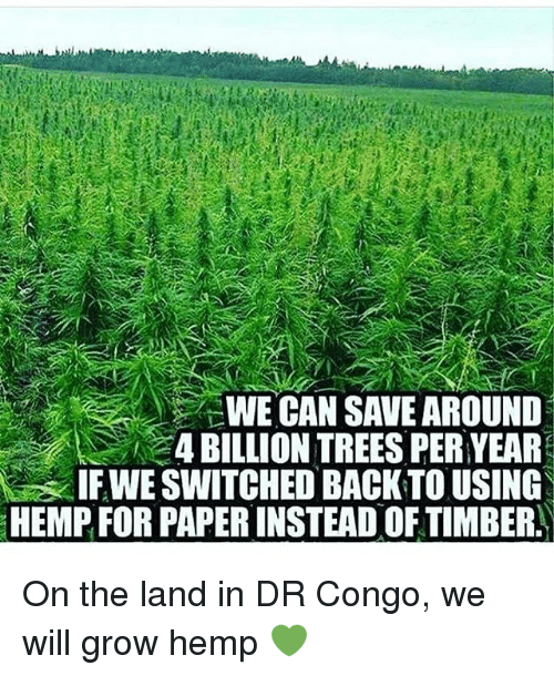 Memes, Trees, and Back: WE CAN SAVE AROUND  4 BILLION TREES PERYEAR  IFWE SWITCHED BACK TO USING  HEMPFOR PAPERINSTEAD OF TIMBER. On the land in DR Congo, we will grow hemp 💚