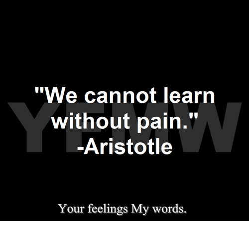 Brains In Pain Cannot Learn >> We Cannot Learn Without Pain Aristotle Iai Your Feelings My Words