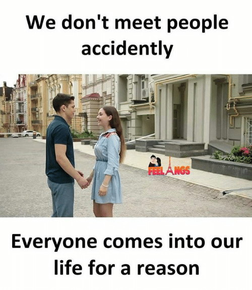 Life, Memes, and Reason: We don't meet people  accidently  Everyone comes into our  life for a reason