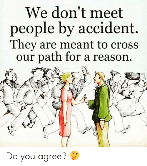 Memes, Cross, and Reason: We don't meet  people by accident.  They are meant to cross  our path for a reason Do you agree? 🤔