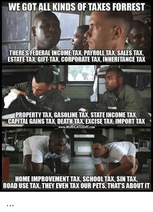 Memes, School, and Taxes: WE GOT ALL KINDS OF TAXES FORREST  THERE'S FEDERAL INCOMETAX, PAYROLL TAX, SALES TAX.  ESTATETAX, GIFT TAX, CORPORATE TAK, INHERITANCE TAX  PROPERTY TAX, GASOLINE TAX, STATE INCOME TAX,  CAPITAL GAINS TAX, DEATH TAX, EXCISE TAX, IMPORT TAX  www.MURICATODAY.COM  '  HOME IMPROVEMENT TAX, SCHOOL TAX, SIN TAX,  ROAD USE TAX, THEY EVEN TAX OUR PETS, THATS ABOUT IT ...