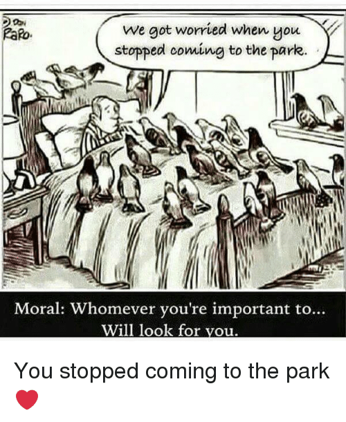 Got, Will, and Park: we got worried when you  stopped coming to the parke  Moral: Whomever vou're important to...  Will look for vou You stopped coming to the park❤