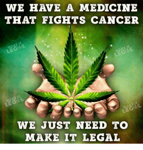 Memes, Cancer, and Medicine: WE HAVE A MEDICINE  THAT FIGHTS CANCER  WE JUST NEED TO  MAKE IT LEGAL