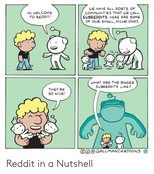 Reddit, Nice, and Niche: WE HAVE ALL SORTS OF  COMMUNITIES THAT WE CALL  SUBREDDITS. HERE ARE SOME  OF OUR SMALL, NICHE ONES.  HI, WELCOME  TO REDDIT!  WHAT ARE THE BIGGER  SUBREDDITS LIKE?  THEY'RE  SO NICE!  O@ GALLMANCARTOONS Reddit in a Nutshell