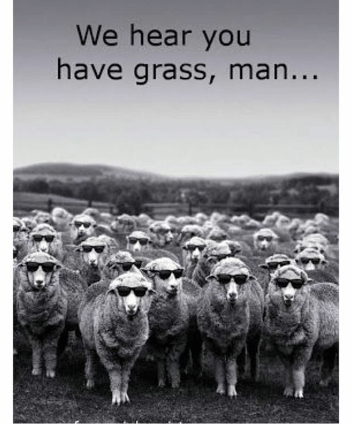 we-hear-you-have-grass-man-20433704.png