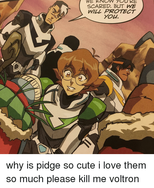 WE KNOW YOU RE SCARED BUT WE WILL PROTECT You Why Is Pidge