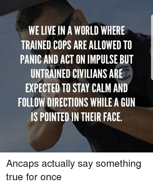 We Live In A World Where Trained Cops Are Allowed To Panic And Act