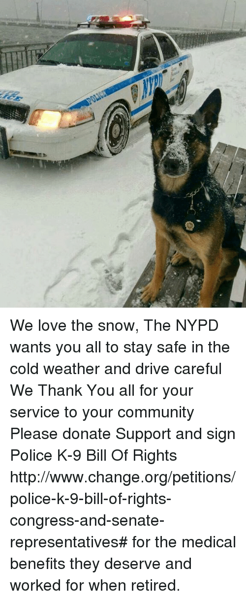 we love the snow the nypd wants you all to stay safe in the cold