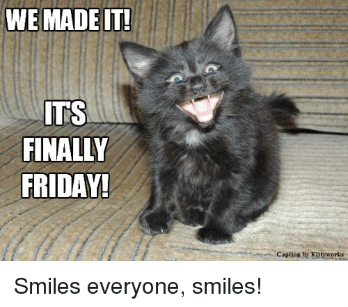 Finals, Friday, and Memes: WE MADE IT!  ITS  FINALLY  FRIDAY!  Caption by Kittyworks Smiles everyone, smiles!