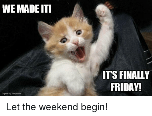 Memes, The Weekend, and We Made It: WE MADE IT!  ITS FINALLY  FRIDAY! Let the weekend begin!