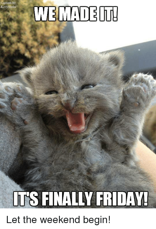 Friday, Memes, and The Weekend: WE MADE IT!  ITS FINALLY FRIDAY! Let the weekend begin!