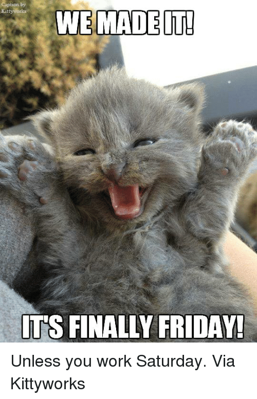 Friday, Memes, and Work: WE MADE IT!  ITS FINALLY FRIDAY! Unless you work Saturday. Via Kittyworks