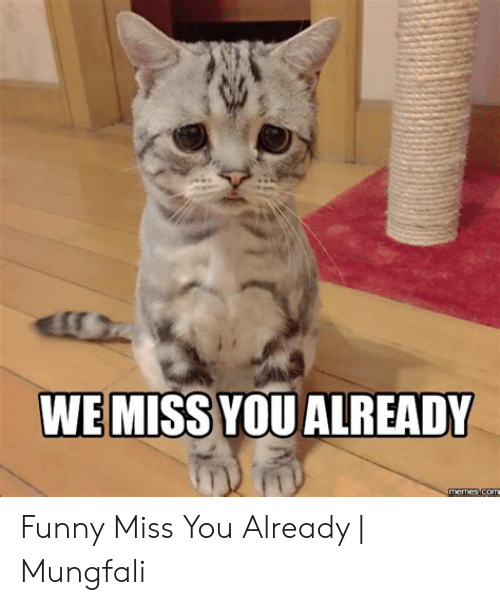 We Miss You Already Funny Miss You Already Mungfali Funny Meme