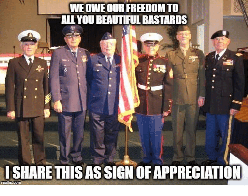 Beautiful, Memes, and Freedom: WE OWEOUR FREEDOM TO  ALL YOU BEAUTIFUL BASTARDS  ISHARE THIS AS SIGN OF APPRECIATION  ingfip.com