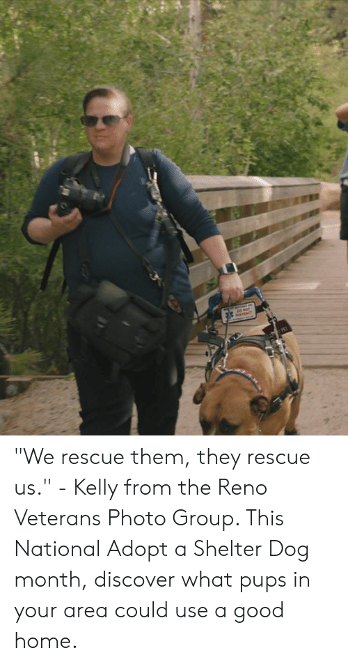 "Dank, Discover, and Good: ""We rescue them, they rescue us."" - Kelly from the Reno Veterans Photo Group. This National Adopt a Shelter Dog month, discover what pups in your area could use a good home."