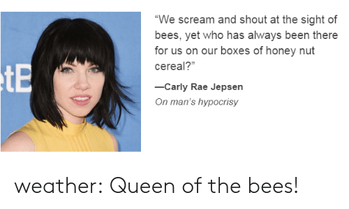 We Scream and Shout at the Sight of Bees Yet Who Has Always