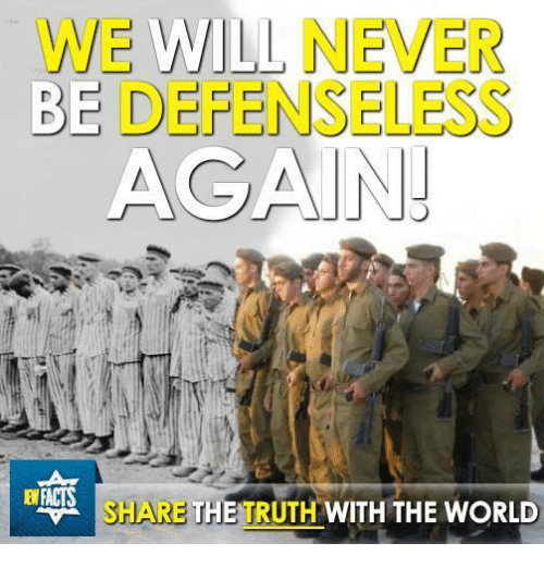 Memes, World, and Never: WE WILL NEVER  BE DEFENSELESS  AGAIN!  SHARE THE TRUTH WITH THE WORLD