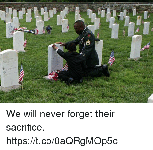 Memes, Never, and 🤖: We will never forget their sacrifice. https://t.co/0aQRgMOp5c