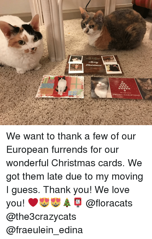 We Wish You A Meowy Christmas We Want To Thank A Few Of Our